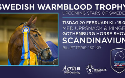 Swedish Warmblood Trophy med Agria Uppsnack